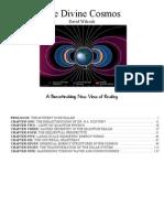 David Wilcock - Convergence 3 - Divine Cosmos