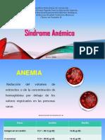 sindrome anemico pediatria