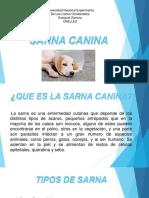 Sarna Canina