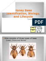 pwg_presentation_pollinator_djoslin