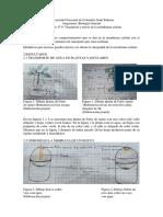 INFORME 4 LABORATORIO DE BIOLOGIA