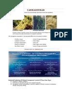 Carageenan.pdf