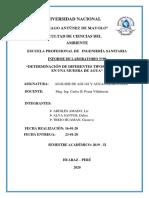 INFORME 9 poma.docx