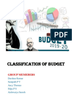 CLASSIFICATION OF BUDGETS