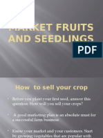 Market fruits and seedlings.pptx