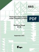 665 Hydrogenerators Behavior Under Transient Conditions