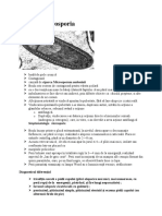 3.3 microsporia