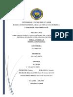 Informe 10 5