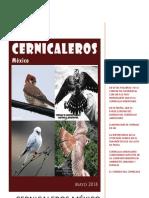 Cernicalero Mayo 16