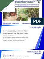 presentacion-de-melampsoridium-del-alnus