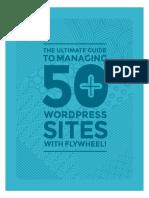 Manage 50 Wordpress Sites