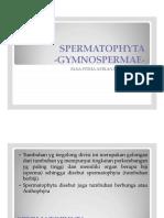 GYMNOSPERMAE.pdf