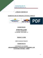 marketingmixoffevicolcompany-130922022932-phpapp01.docx