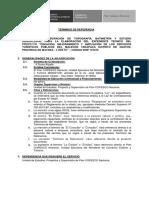 TDR_TOPO BATIHIDROFLUVIAL_2DA