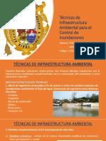 TECNICAS DE INFR AMBNTL.pptx