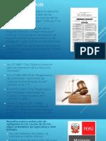 Exposicion caminos 2 conclusiones.pptx