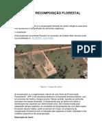 PROJETO DE RECOMPOSIÇÃO FLORESTAL (1)