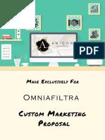 Custom Website Plan