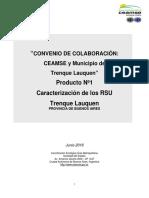 Informe-GIRSU-Producto-1-Trenque-Lauquen (1)