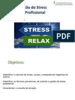 UFCD 3577 Gestao Stress Profissional.pptx