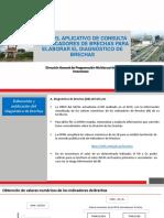 Uso del aplicativo de consulta de indicadores de brechas
