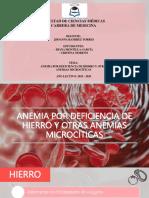 ANEMIA POR DEFICIENCIA DE HIERRO Y OTRAS ANEMIAS MICROCÍTICAS