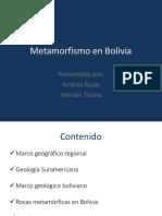 243406027-Metamorfismo-en-Bolivia