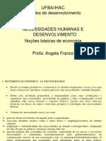 NOÇÕES BÁSICAS DE ECONOMIA RESUMO