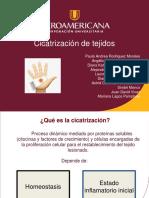 02.CICATRIZACIÓN DE TEJIDOS (1).pptx