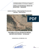 EVALUACION DE RIESGOS PICHOS_NOVIEMBRE_2019.pdf