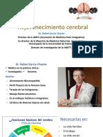 REJUVENECIMIENTO_CEREBRAL.pdf