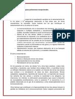 tratameiento, fisiopatología y contaminantes ambientales