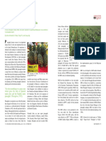 The_MD2_Super_Sweet pineapple Ananas comosu29.pdf