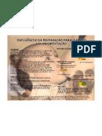 Poster_influencia  PPP na amamentaçao
