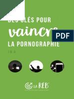 Ebook-Pornographie-2017