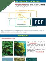 Metabolismo energetico fototrofo