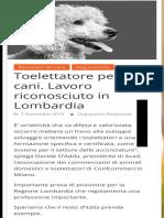 Toelettatore per cani. Lavoro riconosciuto in Lombardia