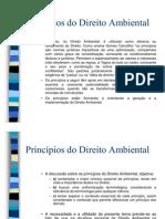 Principio_direito_ambiental