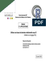 RApplicationSQL.pdf