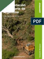 Deforestación en el norte de Argentina - Informe Anual 2019