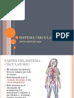 PTT SISTEMA CIRCULATORIO + PRUEBA Y SOLUCIONARIO