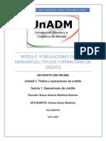 M9_U3_S7_VIDM.pdf
