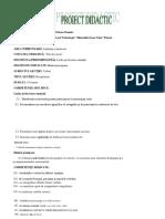 1proiect-limba-romana