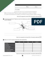 EVA NATU T 1 4º.pdf