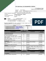Reporte-individual-de-desempeño-laboral