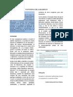 PATOGENIA DEL SARAMPION