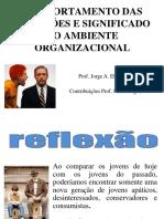 COMPORTAMENTO_DAS_GERAC_O_ES_E_SIGNIFICADO_NO_AMBIENTE_DE_TRABALHO.ppt