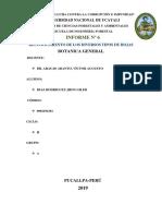 INFORME DE BOTANICA Nº 6.docx