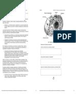 LECTURA 5.4 - Estructura y composición de la célula