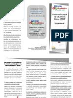 rasgos_del_perfil_de_egreso_de_primaria